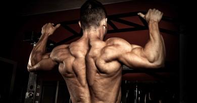 """""""Dar a volta"""" aos seus músculos"""