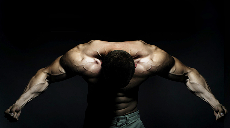 The best exercises for bodybuilding