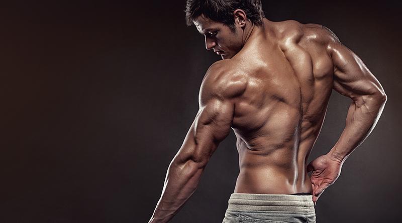 Reforçar a coluna vertebral